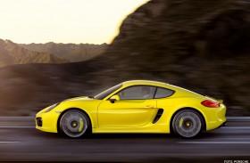 Porsche Cayman S <br />Der Freischwimmer